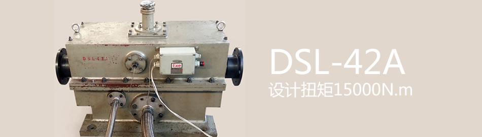 DSL-42A设计扭矩15000N.m